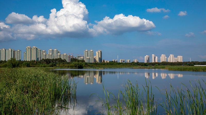 哈尔滨新区一角,张维涛摄影